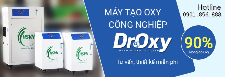 Máy tạo khí oxy công nghiệp Droxy