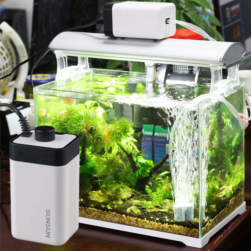 Hình ảnh thực tế máy sục oxy cho bể cá sunsun CT-202