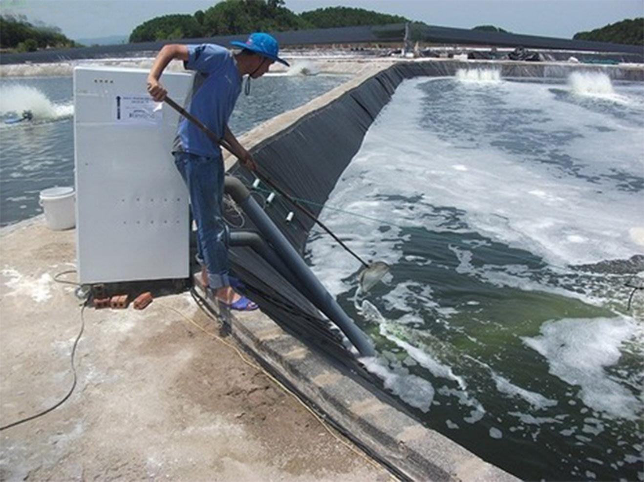 ứng dụng của máy oxy trong nuôi trồng thủy sản